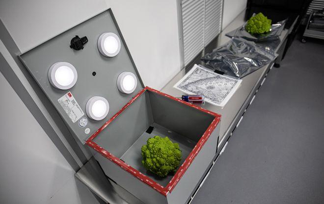 """Como o equipamento ainda não está completamente montado, foi necessário utilizar um """"pinhole"""" para projetar as imagens / Foto: Divulgação"""